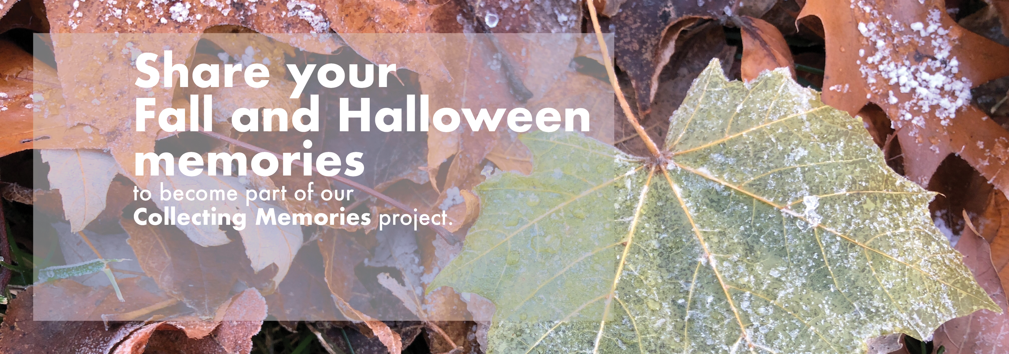 Collecting Memories - Fall and Halloween